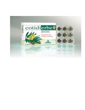 904420472-cotidierbe-45cpr-400mg-nf