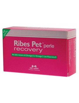 903596765-ribes-pet-recovery-60prl