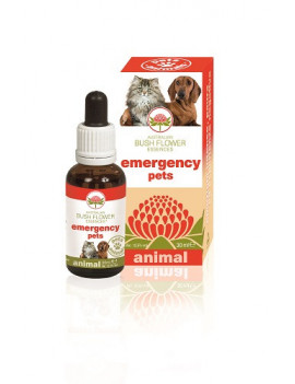 935168803-emergency-pets-30ml