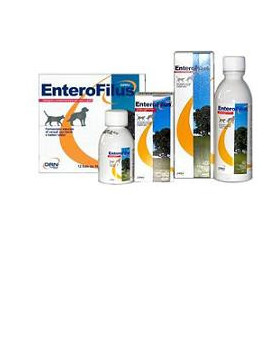 901472314-enterofilus-mang-sempl-250ml