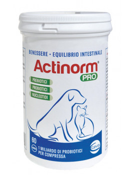 975446055-actinorm-pro-60cpr